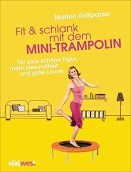 Fit & schlank mit dem Mini-Trampolin: Für eine schöne Figur, mehr Gesundheit und gute Laune -